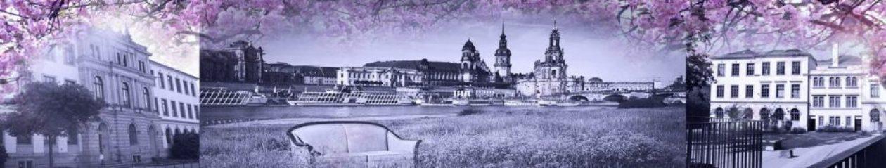 "55. Oberschule ""Gottlieb Traugott Bienert"" Dresden"